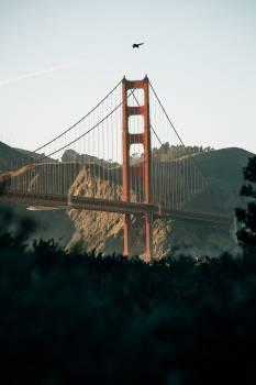 Suspension bridge Bridge Structure #308771
