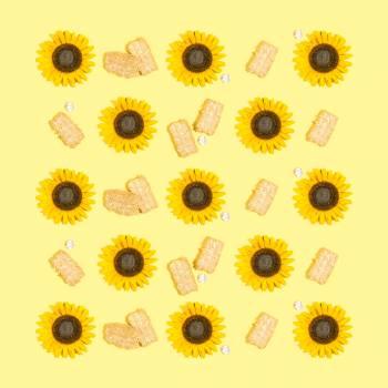 Pattern Wallpaper Sunflower Free Photo