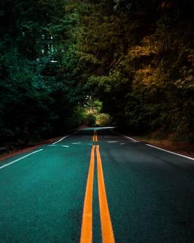 Expressway Road Asphalt #309360