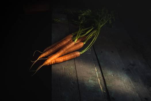 Carrot Root Food #311524