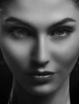 Face Portrait Person Free Photo