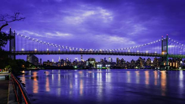 Pier Support Bridge #313178