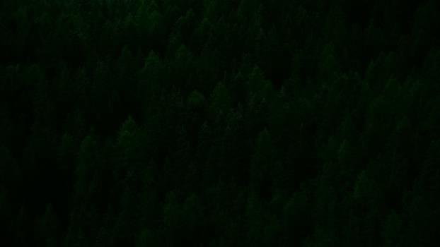 Light Dark Grunge Free Photo