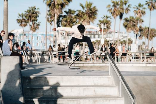 Wheeled vehicle Skateboard Vehicle #316823