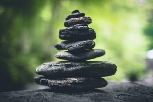Pebble Stones Stone #317389
