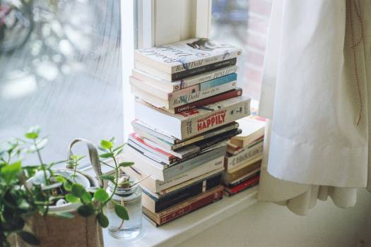Shelf Book Stack #317437