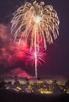 Fireworks Firework Night Free Photo