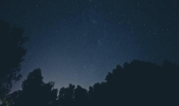 Sky night space trees #31954