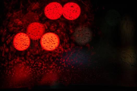 Light Pumpkin Virus Free Photo