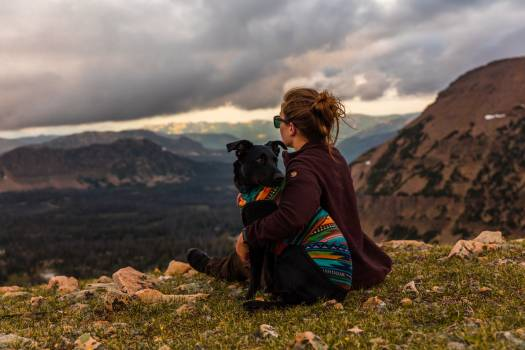 Mountain Highland Hiking #320973