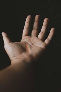 Hand Skin Finger #321200