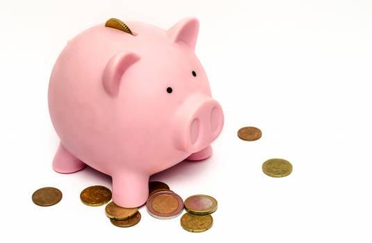 Money pink coins pig #32189