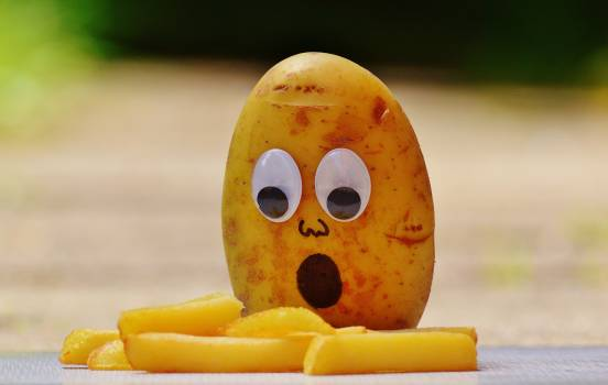 Brown Potato in Front of French Fries #32261