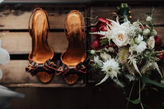 Footwear Shoe Shoes Free Photo