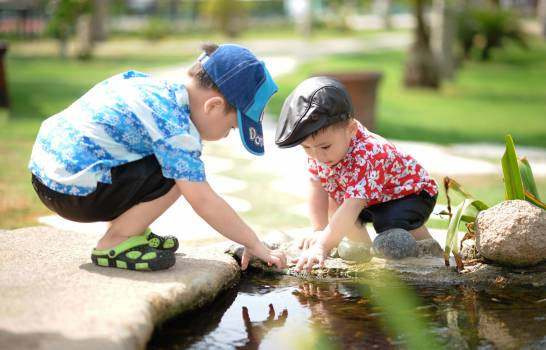 Boy in Blue and White Shirt Playing Near on Body of Water With Boy in Red Shirt #32641