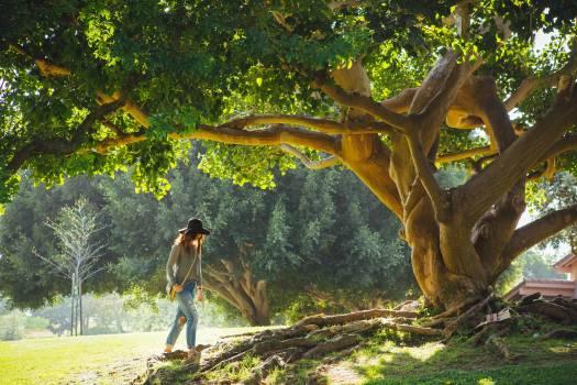 Tree roots girl cap #32646