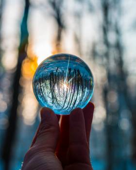 Photo of Person Holding Crystal Ball Free Photo