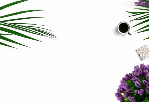 Top-view Photography of White Ceramic Mug On White Background Free Photo