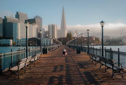 San francisco bridge wood bridge bench #32846