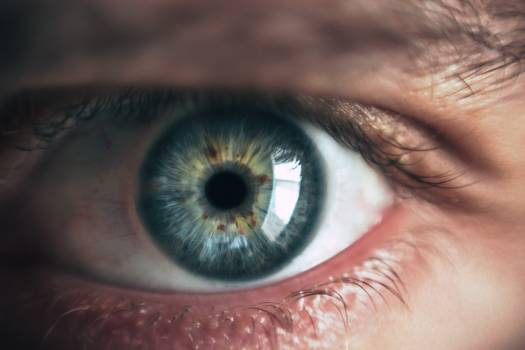 Person Eye Free Photo
