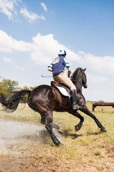Person Horseback Riding Outdoors Free Photo