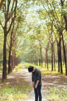 Photo Of Person Standing In Between Trees #329524