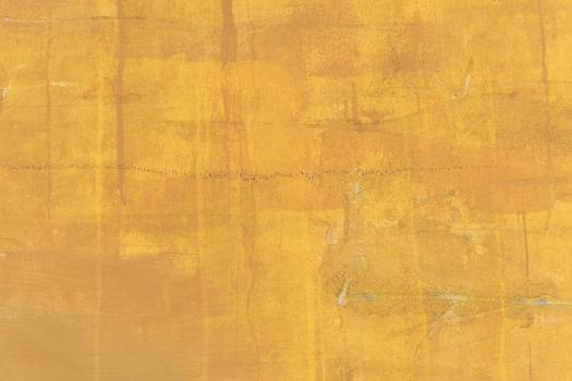 Yellow Painted Wall #329800