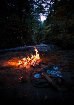 Bonfire #329828