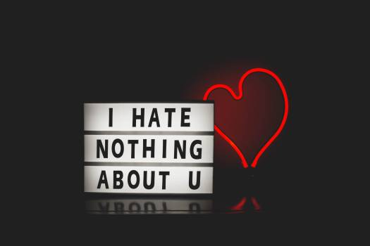 I Hate Nothing About You With Red Heart Light #329988