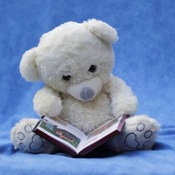 White Teddy Bear With Opened Book Photo #330194