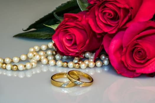 Two Gold-colored Rings Free Photo