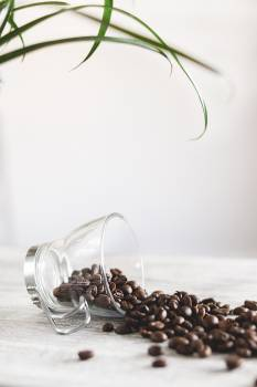 Photo of Spilled Coffee Beans #332014