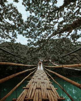 Back View Photo of Woman Standing on Wooden Bridge Free Photo