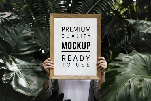 Person Holding Brown Wooden Quote Board in Middle of Green Leafed Plants Free Photo