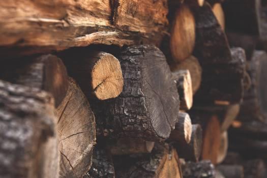 Brown Firewood Free Photo