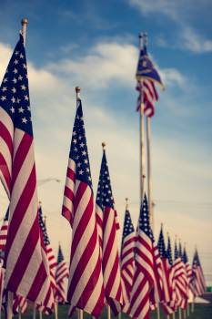 Selective Focus Photography of U.s.a. Flag on Poles Free Photo