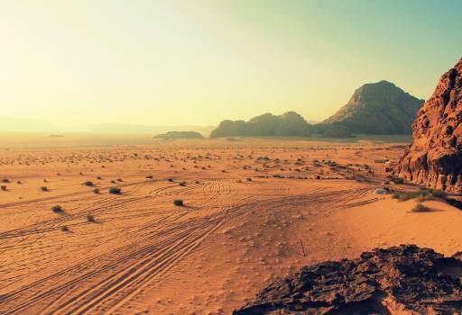 Sand Field #333610
