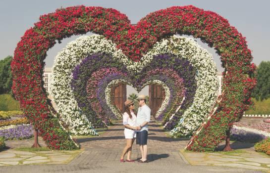 Sweet Photo of Couple Free Photo