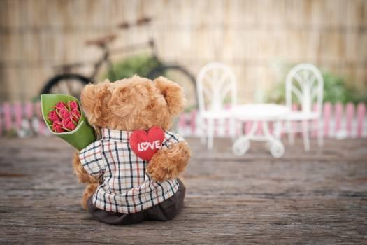Brown Bear Plush Toy Holding Red Rose Flower #333896