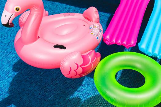 Pink Flamingo Inflatable Ring and Green Inflatable Ring on Swimming Pool #334051
