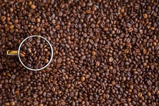 Coffee Beans #33419