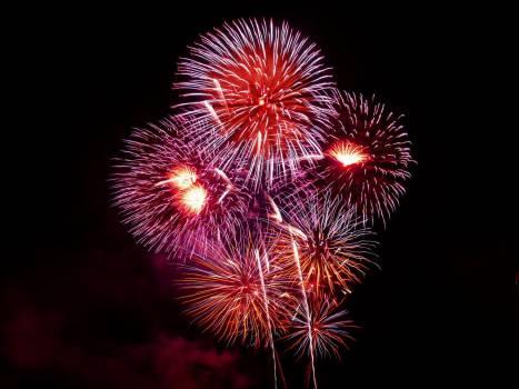 Purple Red White and Orange Fireworks Display Free Photo