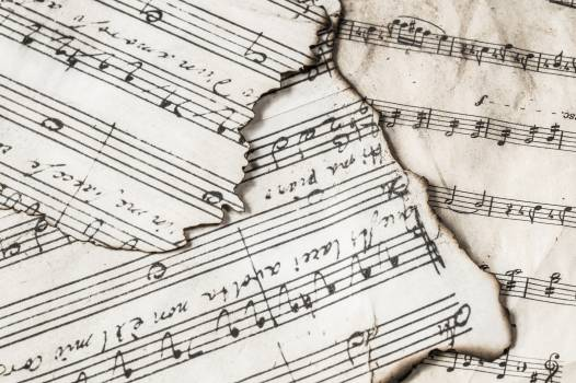 Music Notes #334397