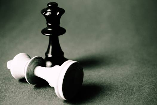Black Queen Chess Piece #33440