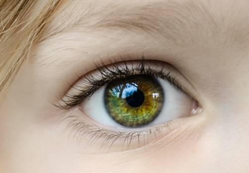 Closeup Photo of Human Eye Free Photo