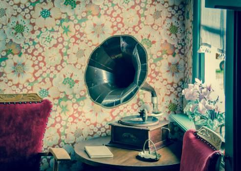 Brown and Black Gramophone Free Photo