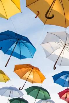 Assorted-color Umbrella Lot #335738
