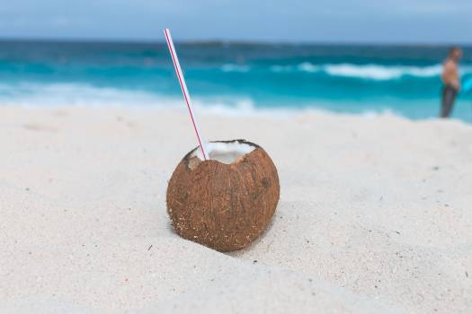 Brown Coconut on Sand Free Photo