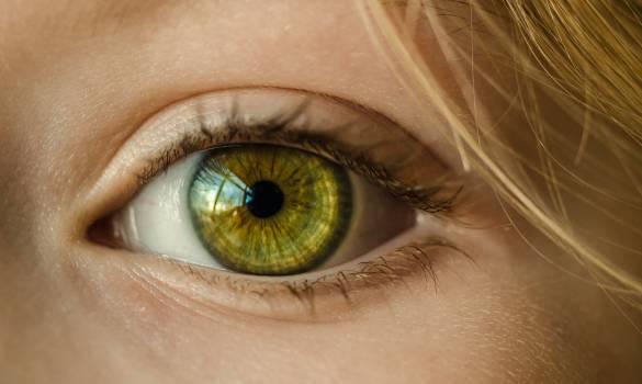 Person's Eye Free Photo