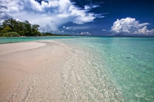 Seashore Near Body of Water Free Photo